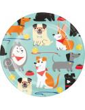 assiettes theme chiens en suisse